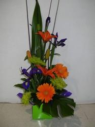 Tall Bright Box Arrangement