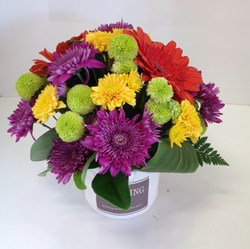 Bright Pot Arrangement