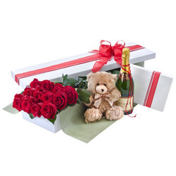 12 red rose presentation box, wine chocs and teddy