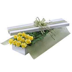 Presentation Box of a Dozen Yellow Roses