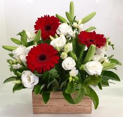 A Red and White Crate Arrangement