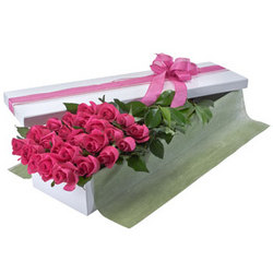 Two Dozen Pink Rose Presentation Box