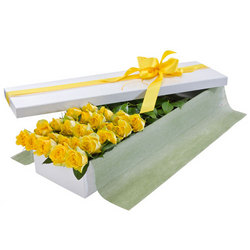 Two Dozen Yellow Rose Presentation Box