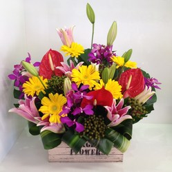 A Vibrant Crate Arrangement