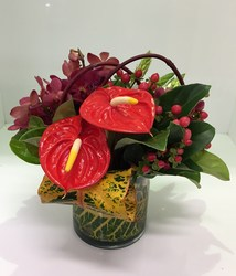 Tropical Domed Vase Arrangement