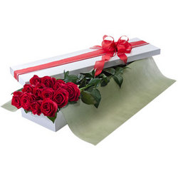 A Presentation box of 12 red roses