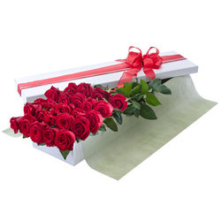 A Presentation box of 24 red roses
