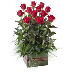 A dozen red roses in a box arrangement