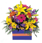 Bright fresh Perth flowers - Lady Love ~delivered