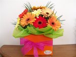 Happy flowers - gerberas - delivered