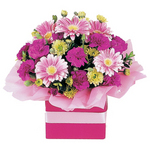 Cute blooming flowers - delivered