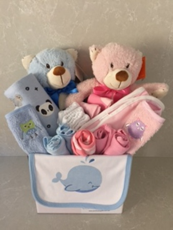Its a boy and its a girl baby gifts twins baby gifts its a boy and its a girl negle Gallery