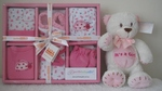 6 Piece Pink Lady Bug Clothing Set and Bear