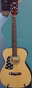 Aria Acoustic Small Body Guitar