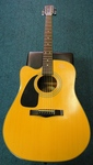 Fender Acoustic Electric Guitar