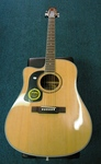 Washburn D10SCE Acoustic Electric Guitar