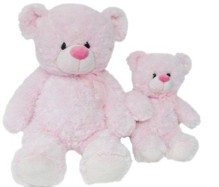 Medium Pink Teddy